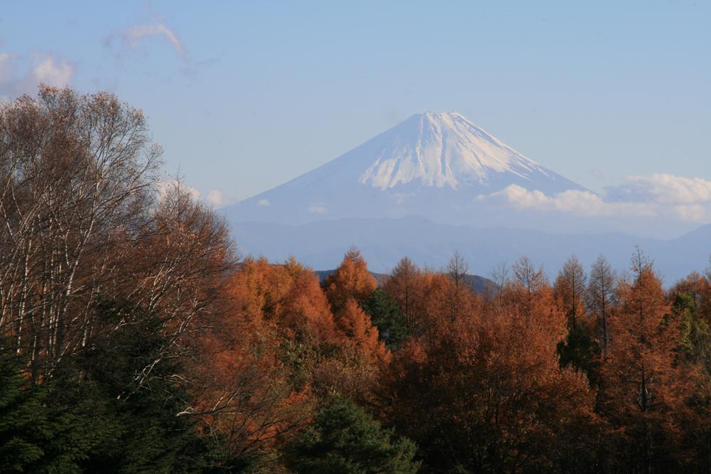 fuji_121112